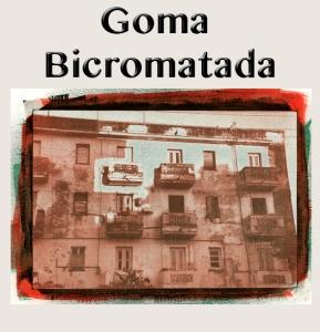 Icono Galeria Goma Bicromatada